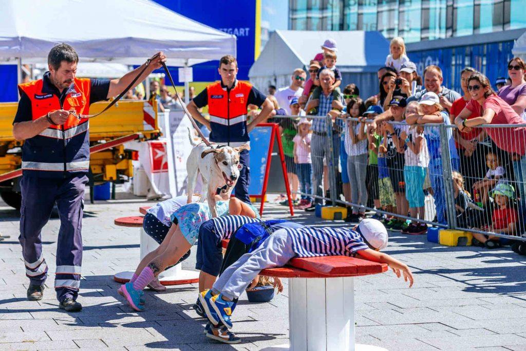 Hundestaffeln von Zoll und den Maltesern mit ihren Vorführungen
