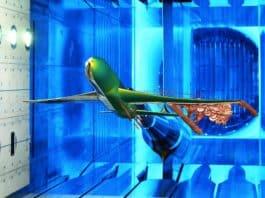 Flugzeugmodell im Transschall-Windkanal: Eine Fotomontage eines Windkanalmodells über das bildlich die numerische Simulation der Aerodynamik eines Verkehrsflugzeus bei hohen Fluggeschwindigkeiten gelegt wurde.