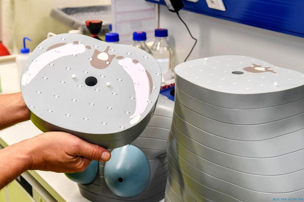 Frauen im All: DLR leiteForschung bei erster Mondreise