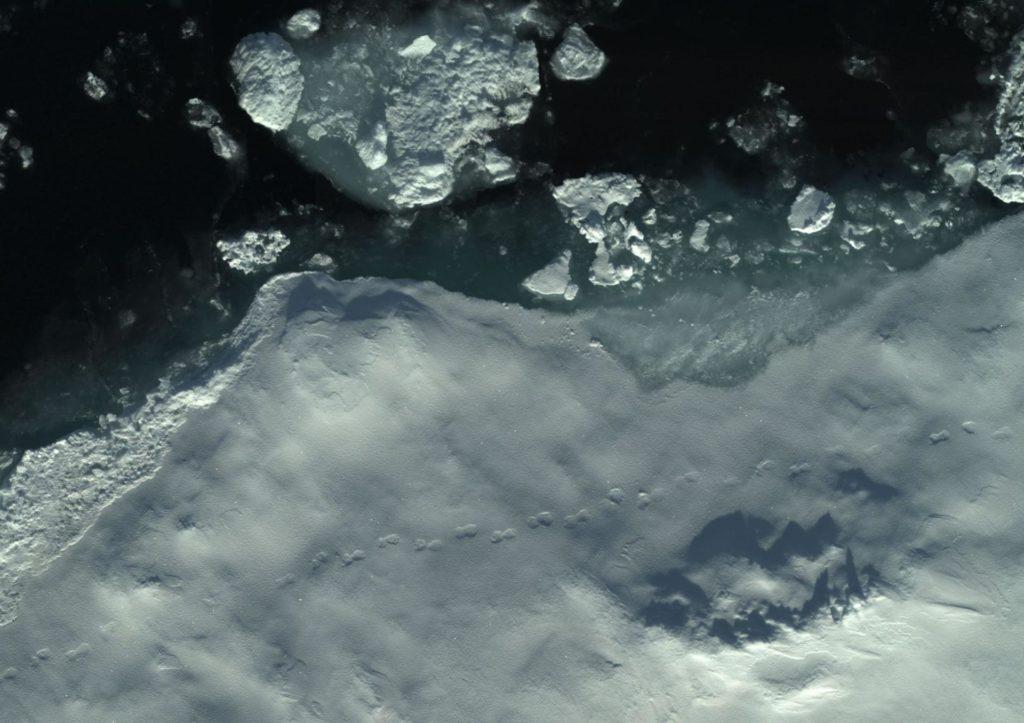 Eisstrukturen und Eisbärenspuren auf einer arktischen Eisscholle.