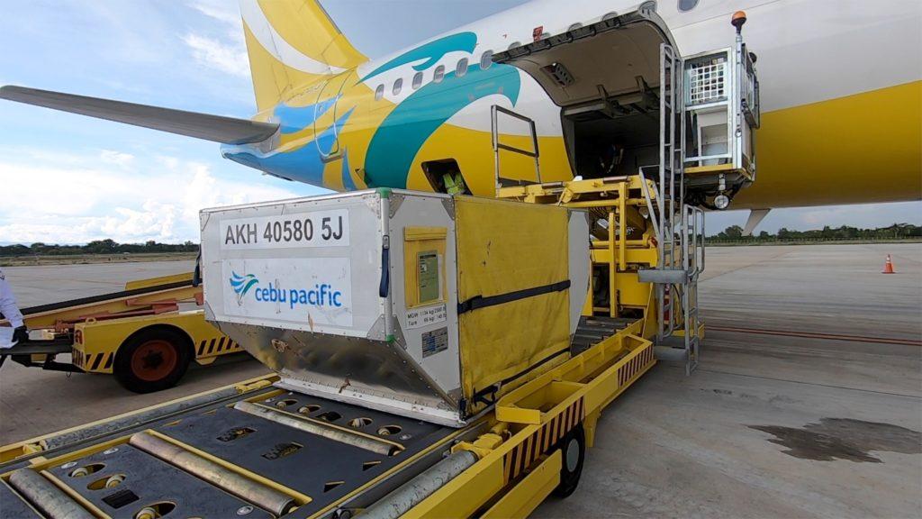 ULD - Airbus (Foto: Cebu Pacific)