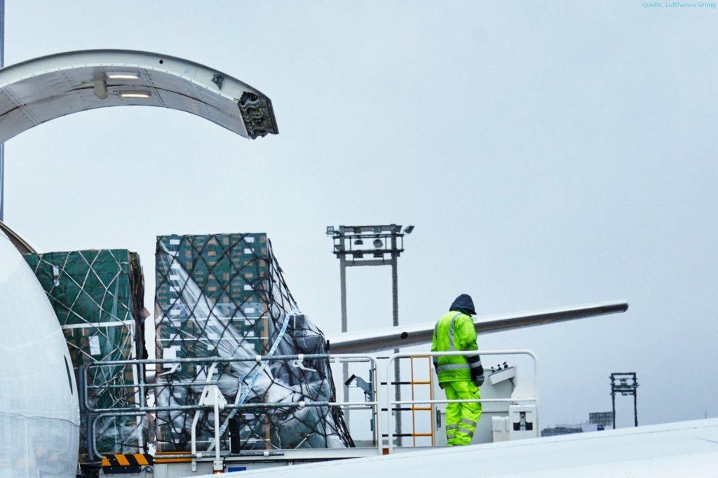 Lufthansa Cargo baut A321 zu Frachtflugzeugen um